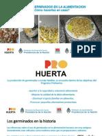inta_-_germinados_-_prohuerta_2017