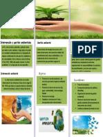 Intervención y Gestión Ambientales Gestión Ambiental