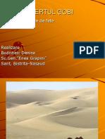 Desert Ul Gobi