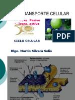 6ta Transporte Celular y Ciclo Celular