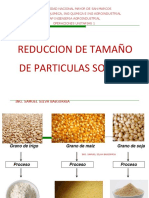 001 - REDUCCION DE TAMAÑO.pptx