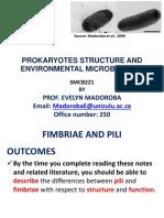Fimbriae and Pili