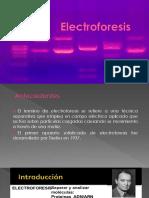 Electroforesis faby.pptx