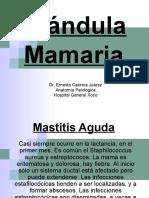 Lesiones Inflamatorias de La Glándula Mamaria 2018