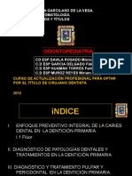 262962559 Terapiapulparuigv2 Odontopediatria 141105151536 Conversion Gate02 Pptx
