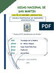 PRACTICA-N1-IDENTIFICACION-DE-ARBOLES-1.docx