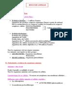 id-3457.doc