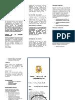 TRIPTICO PREVARICATO (Autoguardado).Doc1.Doc Final