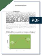 Diseño Organizacional Basico Cap·11 Resumen