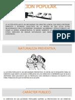 Presentación1 ACCION