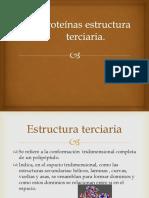 Proteínas-terciarias