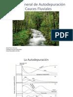 Manual General de Autodepuración de Cursos Fluviales. Daniel Flores Hinojosa