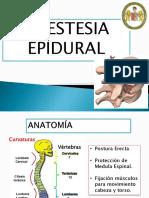 Anestesia Epidural Expo