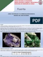 Fluoritaexp