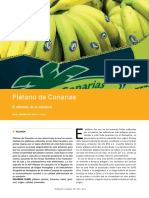 1412286426 Platano de Canarias