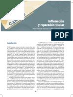Inflamacion y Reparacion Tisular