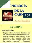 tecnologia-de-la-carne-1234756650412903-1