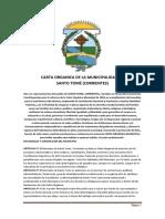 CARTA-ORGANICA-SANTO-TOMÉ.docx