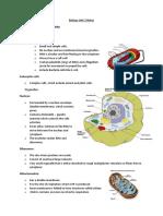 Biology Unit 2 Notes.docx