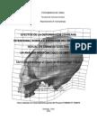 Efectos_de_la_deformacion_craneana_inten.pdf
