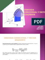 Derivada Direccional y Vector Gradiente