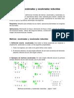 Matrices Escalonadas ;V