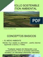 1 - G- Desarrollo Sostenible y Gestion Ambiental-nuevo