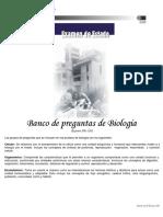 2001 Profundización