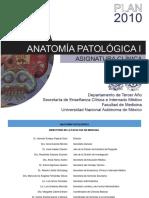 6 Anatomia Patologia I
