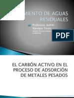 carbon acitvado