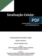 Sinalização 2017 para estudo.pdf