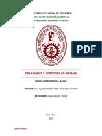 Informe Polinomios y Vectores Matlab