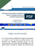 11-S9-Adi-SLIDES_Intercultural_character_cross_border_mediation.pptx