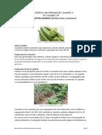 Boas Práticas Na Preparação, Plantio e Pós Plantio de Quiabo
