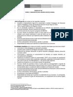 Anexo 08 Perfil y Requisitos Del Equipo Institucional Aa (1)