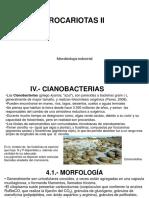 4. PROCARIOTAS 2.pdf