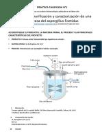 Trabajo Bio Procesos Proteasa