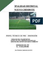 167367488 Perfil Tecnico Polideportivo