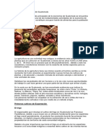 Producción Agrícola de Guatemala