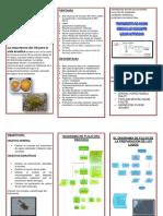 PARAMETROS DE CALIDAD DEL AGUA Y CRITERIOS DE CALIDAD.docx