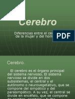 CEREBRO.pdf PDF - Copia