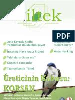 Kis2004