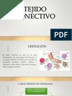 TEJIDO CONECTIVO citogenetica