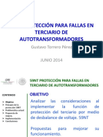Pps Gtp Doble 2014 Proteccion 64n (2)