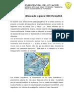 Resumen Coco Nazca