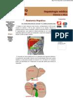 Anatomia Hepática