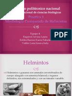institutopolitcniconacional-120307214408-phpapp02