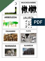 Sustantivos colectivos (anexo)