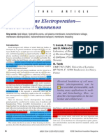Electroporation Phenomenon 12