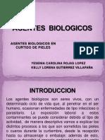 Agentes Biologicos Yesenia y Kellys